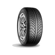 Michelin Pilot Sport A/S Plus фото
